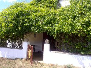 La Masseria Murgia Albanese - La Dependance
